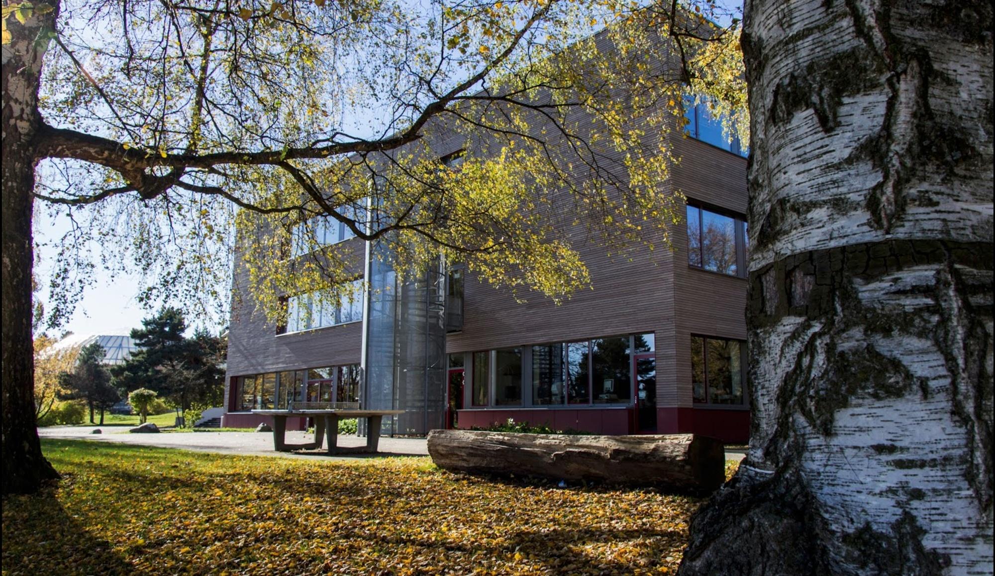 Gymnasium Aulendorf – Schuleingang – ® Google Maps Schule am Schlosspark